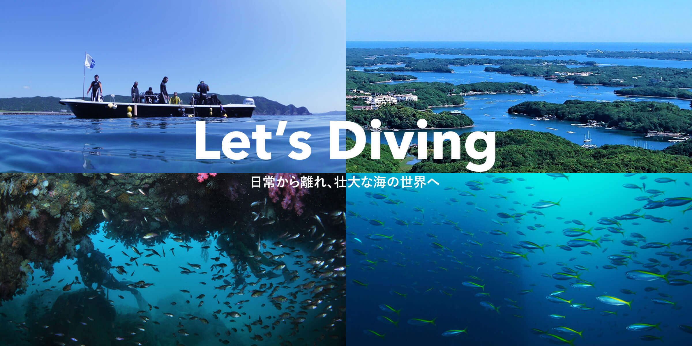Let's Diving